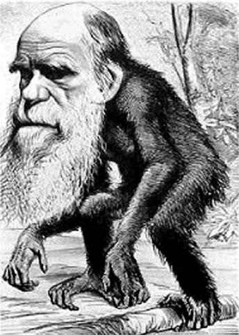 εξελικτικοσ αναλφαβητισμοσ