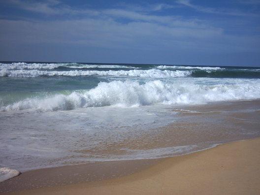 μολυσμενοι με εντομοκτονο οι ωκεανοι