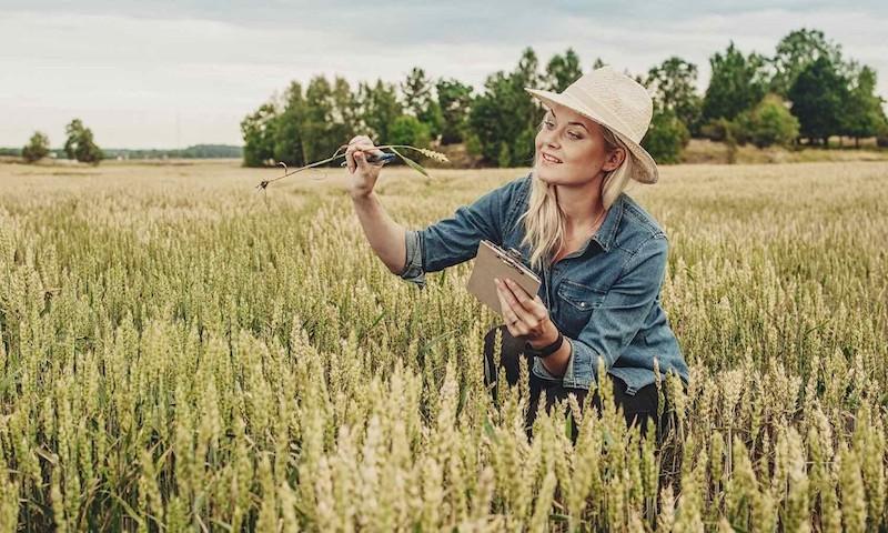 παγκοσμια ημερα γυναικασ αγροτισσασ