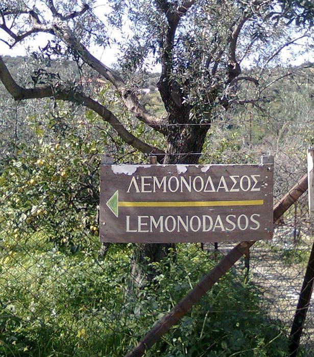 εκδρομη στο λεμονοδασοσ πορου