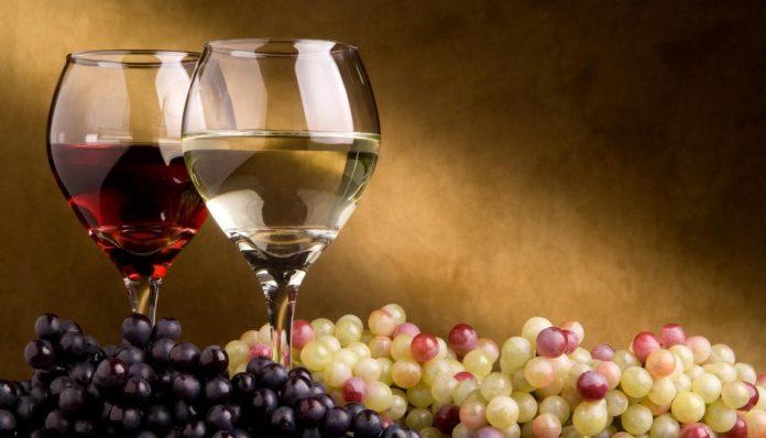 Η Μελίνα Κριτσωτάκη ξεκινά ...από ρώγα από σταφύλι για να περιγράψει τα πάντα γύρω από τον καρπό που μας δίνει το αμπέλι. Από την βρώση του μέχρι το κρασί και τη σταφίδα, το υπέροχο αυτό φρούτο παραμένει σημείο αναφοράς, όχι για την αγροτική παραγωγή, αλλά και για τον πολιτισμό μας. new deal