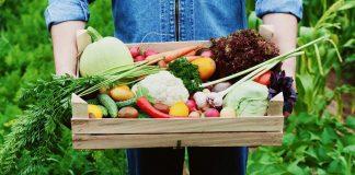 Η Μελίνα Κριτσωτάκη μας μυεί στα λαχανικά του Φθινοπώρου. Πράσα, μπρόκολο, σπανάκι, πολύχρωμες πιπεριές, λαχανάκια Βρυξελλών, μαρούλι, λάχανο, κουνουπίδι, ραπανάκι, σέλινο, σπαράγγι, κολοκύθα, γλυκοπατάτα, έχουν την τιμητική τους σε αυτό το αφιέρωμα. new deal
