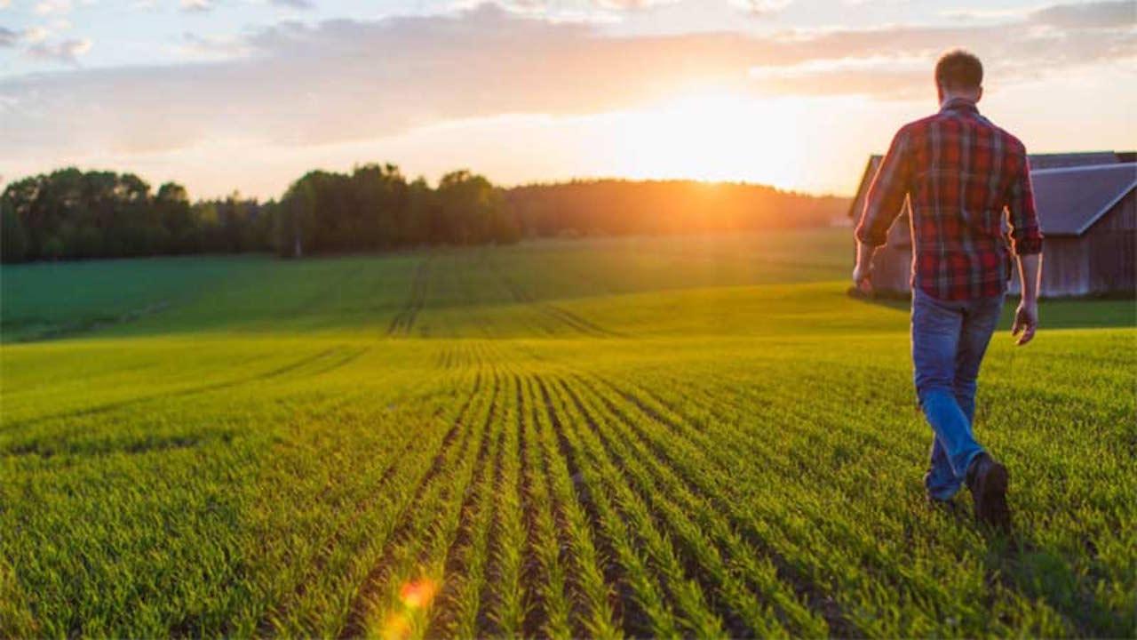 Η Μελίνα Κριτσωτάκη μας παρουσιάζει την περμακουλτούρα, ένα ολιστικό σύστημα παραγωγής τροφής και σχηματισμού κοινοτήτων. Στην ουσία, πρόκειται για αγροτικά παραγωγικά συστήματα (φάρμες) τα οποία προσαρμόζονται στα φυσικά οικοσυστήματα. new deal